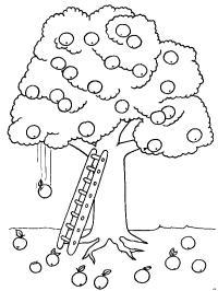 bomen kleurplaten gratis kleurplaten printen